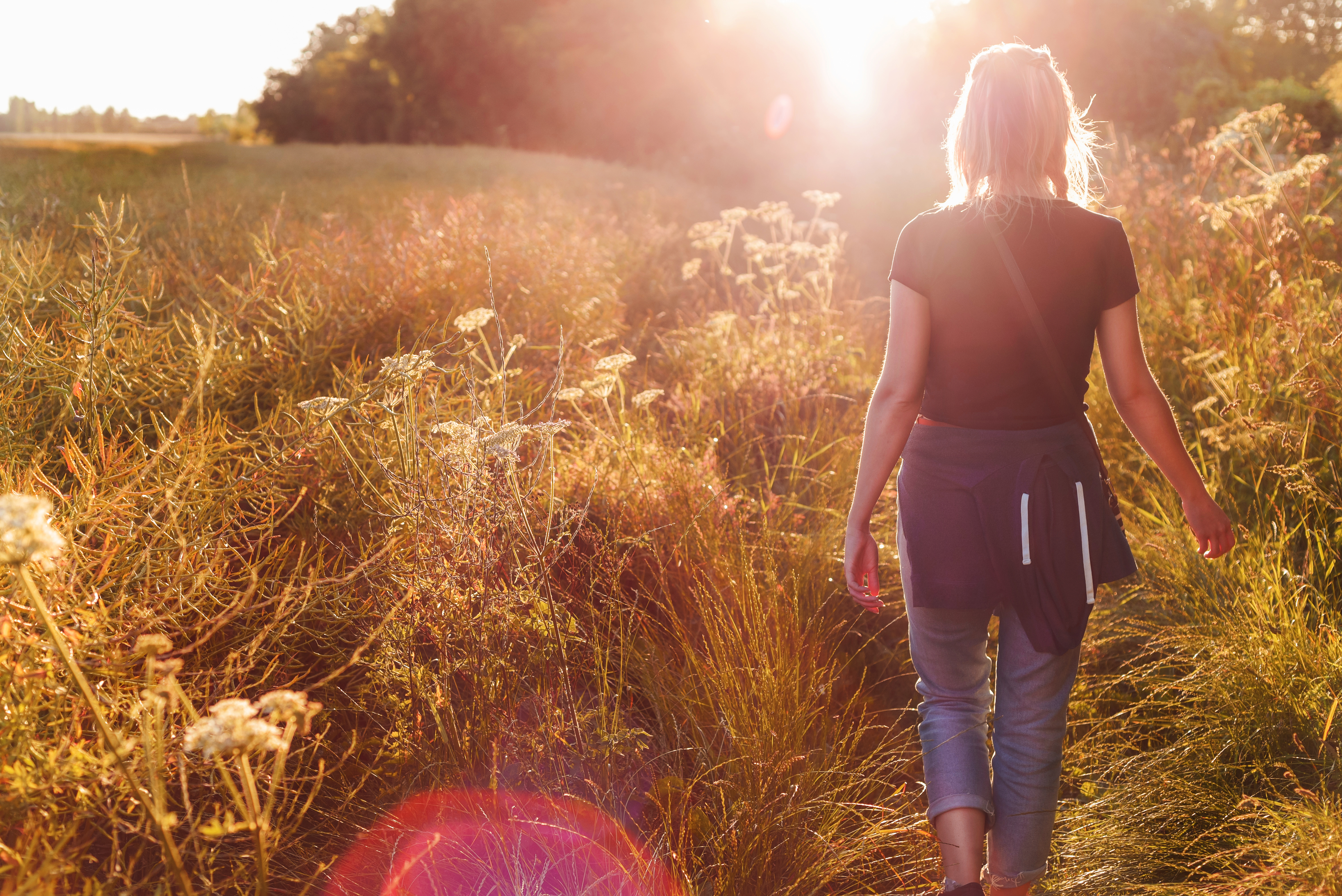 Walking country sunshine
