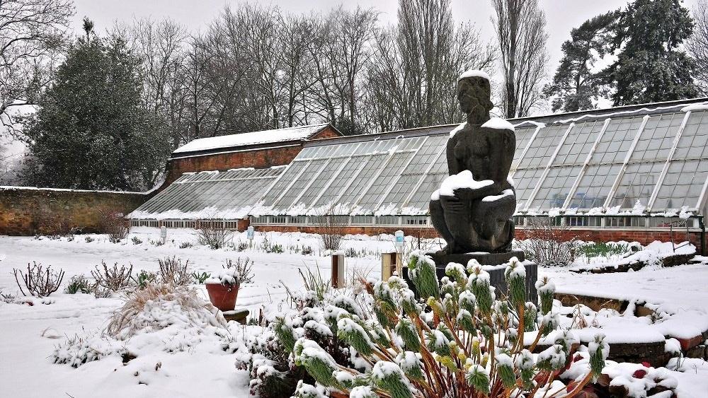 WEB Delapre Gardens Snow-515579-edited
