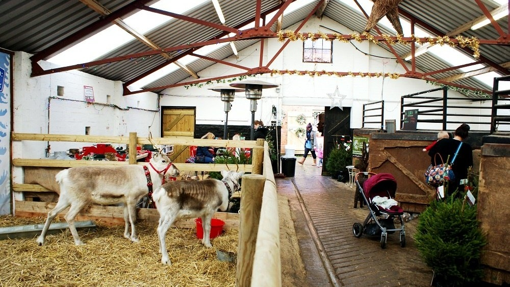 WEB Welford Christmas Tree Farm Barn-163666-edited