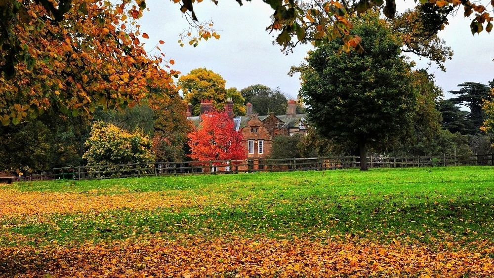 Autumn Delapre Abbey-334744-edited