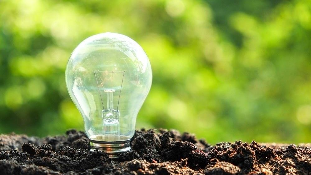 WEB - sustainable light bulb-389447-edited