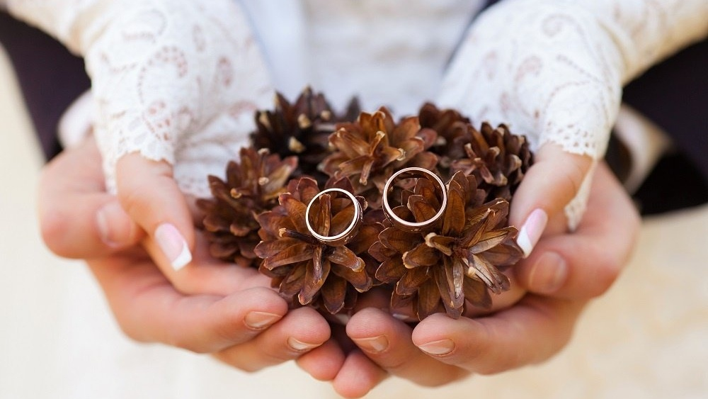 WEB Pine cones winter wedding-593648-edited