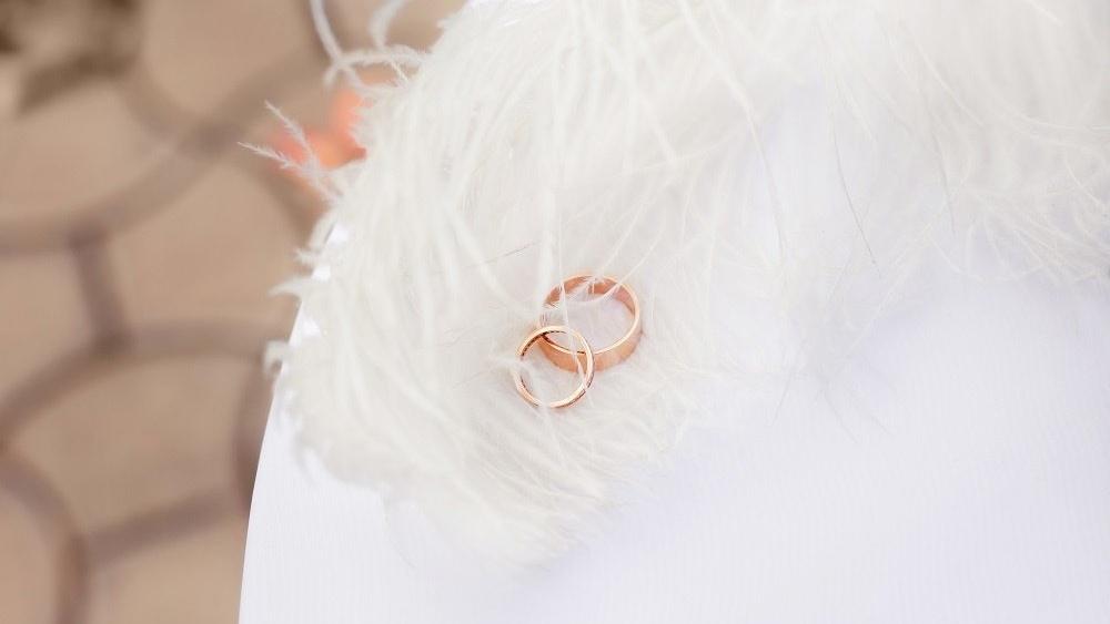 WEB Wedding feathers-968256-edited