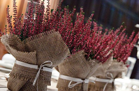 Wedding plant pots